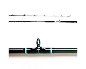 The Best Fishing Rod