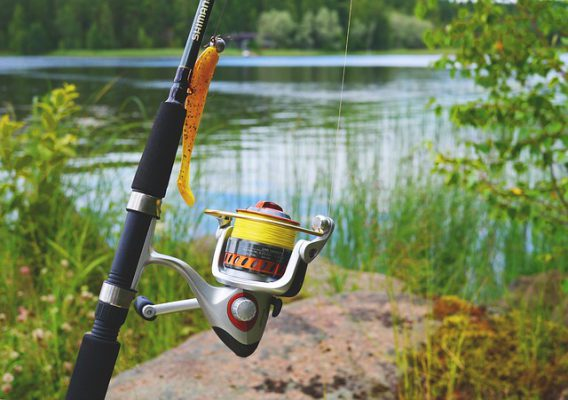 The Best Fishing Reels – A Good Place To Start