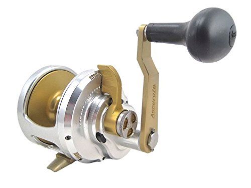 Accurate Reels Review – Fury Single & Two Speed Reels
