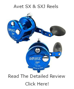 Avet SX And SXJ Reel Review