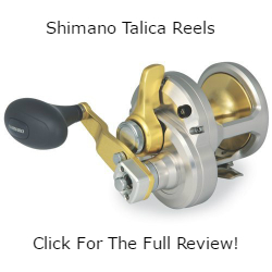 Shimano Talica Reels Review