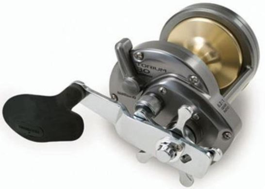 Shimano Torium Review – Compact & Powerful Star Drag Reels