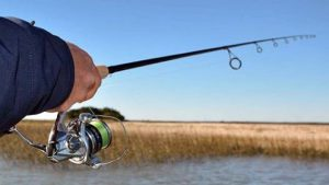 Shimano Teramar West Coast Spinning Rods
