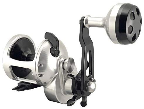 Accurate Tern Star Drag Reel